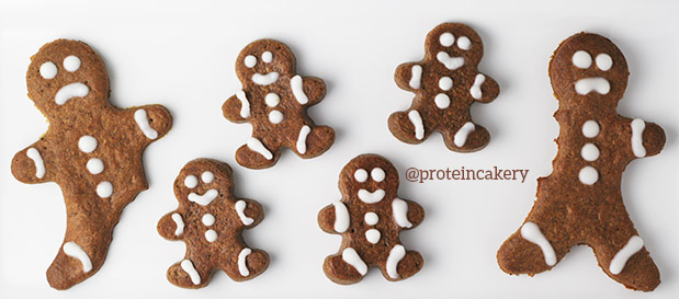 protein-cakery-gingerbread-protein-warrior-cookies-1