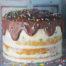 protein-birthday-cake-naked-drip-sprinkles